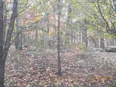 Rockingham County Lots & Land For Sale: 197 Quarry Ln