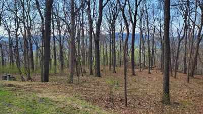 Nelson County Lots & Land For Sale: 449 Far Knob Climb