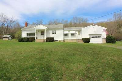 Shenandoah County Single Family Home For Sale: 1168 Camp Roosevelt Rd