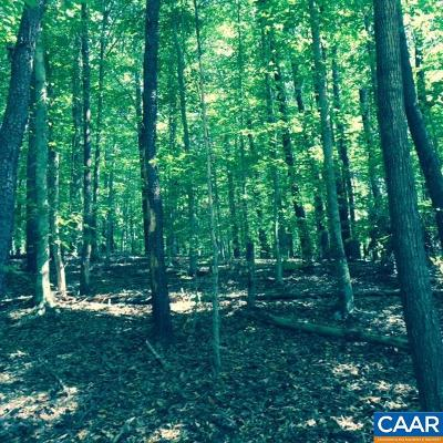 Albemarle County Lots & Land For Sale: Porter Rd