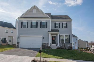 Single Family Home For Sale: 110 Megan Ln