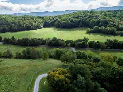 Lots & Land For Sale: Springbranch Rd