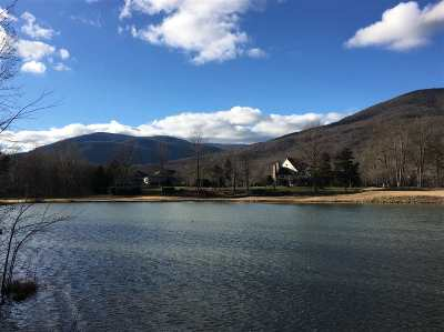 Nelson County Lots & Land For Sale: 24 Barn Owl Ln