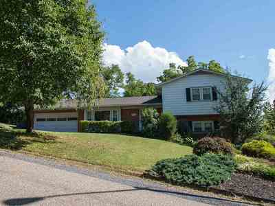Harrisonburg VA Single Family Home For Sale: $285,000