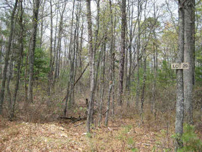 Hinton Lots & Land For Sale: Lot 29 Birds Nest Rd