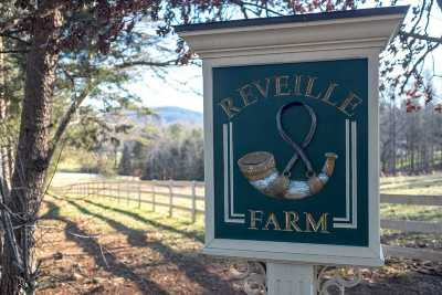 Albemarle County Single Family Home For Sale: 6008 Midway Rd #Reveille