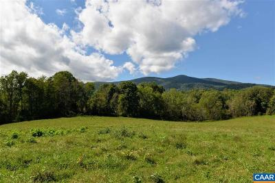 Lots & Land For Sale: Blundell Hollow Rd