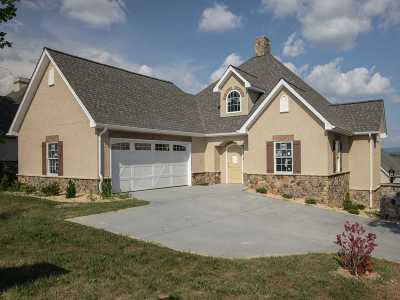 Harrisonburg VA Single Family Home For Sale: $384,900