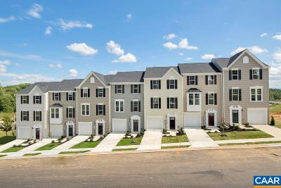 Albemarle County Townhome For Sale: 811d Elm Tree Ct