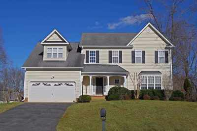 Albemarle County Single Family Home For Sale: 1248 Loring Run