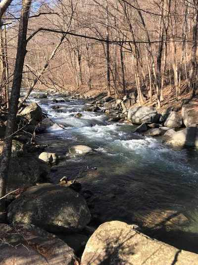 Lots & Land For Sale: Perkins Mill Rd