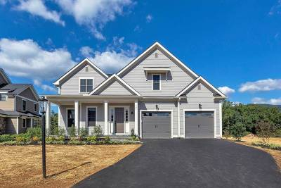 Albemarle County Single Family Home Pending: 765 Golf View Dr