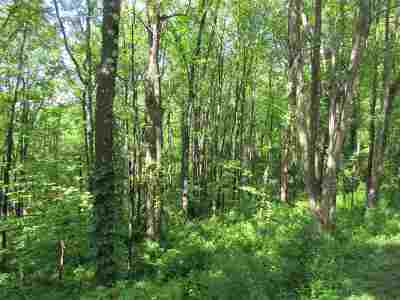 Albemarle County Lots & Land For Sale: Mission Home Rd