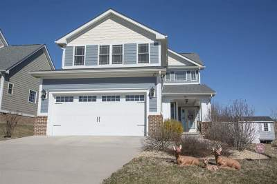 Fishersville Single Family Home For Sale: 361 Windsor Dr