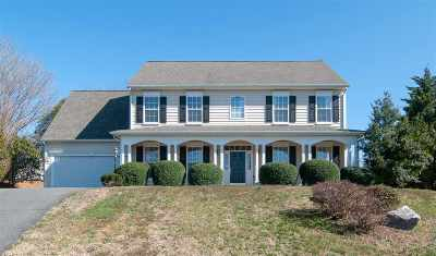 Albemarle County Single Family Home For Sale: 5300 Little Fox Ln