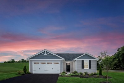 Single Family Home For Sale: 91 Penny Ln
