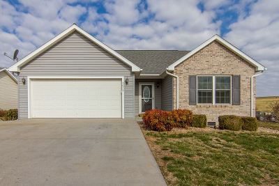 Rockingham County Single Family Home For Sale: 3050 Declaration Dr