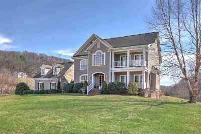 Afton Single Family Home For Sale: 9051 Dick Woods Rd
