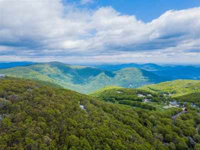 Nelson County Single Family Home For Sale: 910 Devils Knob Loop