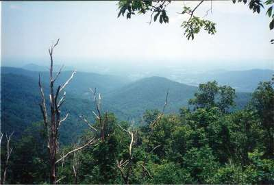 Lots & Land For Sale: Snow Mountain Rd