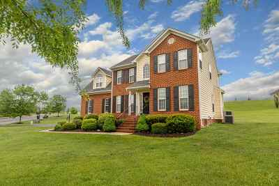 Waynesboro, Staunton Single Family Home For Sale: 132 Ana Marie Blvd