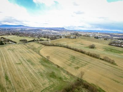 Harrisonburg Lots & Land For Sale: 75 Acres Pear St