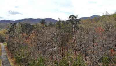 Nelson County Lots & Land For Sale: Lot 14 Lakeland Ln