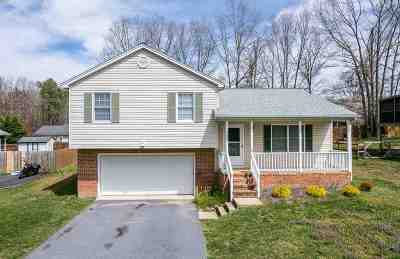 Augusta County Single Family Home For Sale: 137 Canton Ln