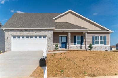 Augusta County Single Family Home For Sale: Lot 74 Langley Dr