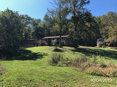 Greene County Single Family Home For Sale: 153 Golden Horseshoe Rd