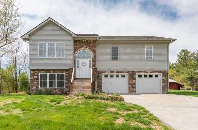 Staunton Single Family Home For Sale: 416 Sangers Ln