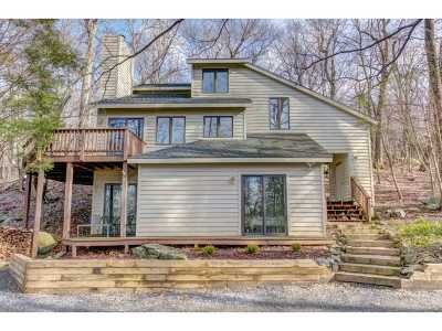 Nelson County Single Family Home For Sale: 57 Deer Springs Ln