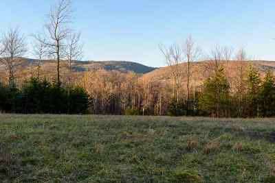 Albemarle County Lots & Land For Sale: 9 Handley Way