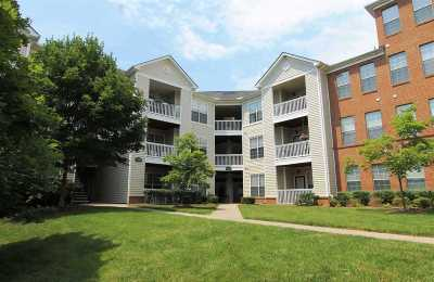 Albemarle County  Condo For Sale: 310 Riverbend Dr #4D