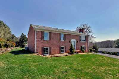Albemarle County Single Family Home For Sale: 1834 Brenda Ct
