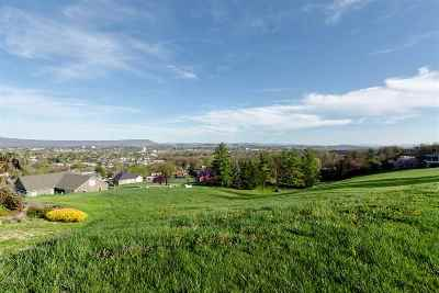 Lots & Land For Sale: 970 Summit Ave