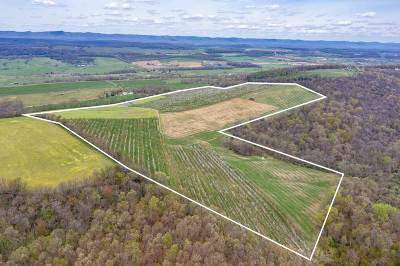 Timberville Lots & Land For Sale: Tbd Spring Dale Dr