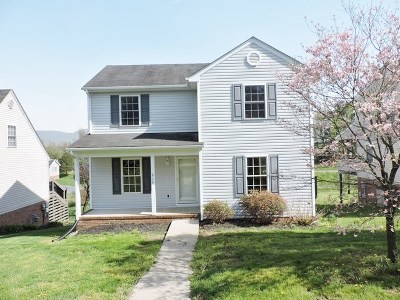 Waynesboro, Staunton Single Family Home For Sale: 916 Sherwood Ave