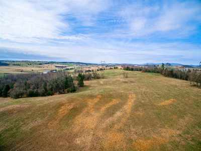 Rockingham County Lots & Land For Sale: 15 Acres Warm Springs Pike