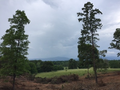 Lots & Land For Sale: Amicus Rd