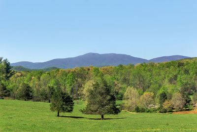 Albemarle County Lots & Land For Sale: 1252 L 2 Ortman Rd