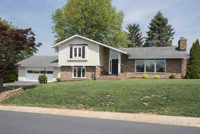 Single Family Home For Sale: 905 Summit Ave