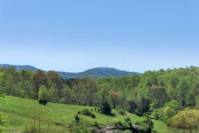 Albemarle County Lots & Land For Sale: 1252 L 1 Ortman Rd
