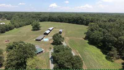 Fluvanna County Single Family Home For Sale: 677 Blue Ridge Dr