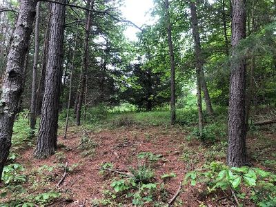 Lots & Land For Sale: A Wyant Ln