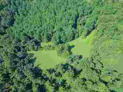 Lots & Land For Sale: B Ruth Hollow Fire Trl