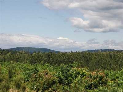 Charlottesville Lots & Land For Sale: 3500 Martin Kings Rd