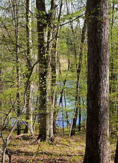 Lots & Land For Sale: Lot 1d Wilhoits Mill Rd