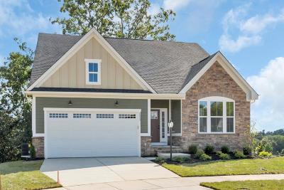 Single Family Home For Sale: 20a McKinley Ln