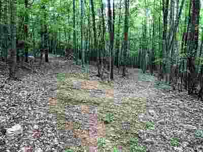 Lots & Land For Sale: Maury River Rd